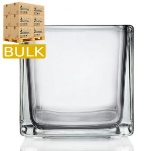 29cl Glass Cube Vases